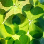 A Little Bit O' Blarney! Presented by The Keating Group